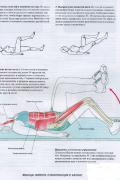 Анатомия фитнеса и силовых упражнений для женщин Велла М.