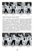 """Сунь Лутан и его труд """"Изучение Багуацюань"""". Перевод. Комментарий. Пояснения к практике (книга + DVD) Музруков Г."""